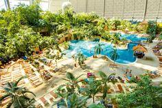 Kurzurlaub im Spreewald mit der ganzen Familie inklusive Eintritt für Tropical Islands - 2 oder 3 Tage ab 79 € | Urlaubsheld