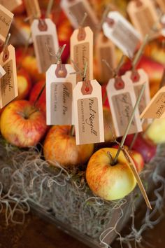 Apple escort cards. Knowing David and I, if we did this they'd be candied in some way.
