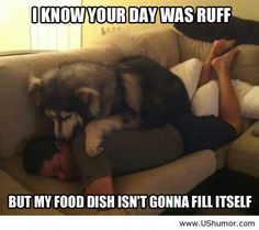 Haha ..Dogs..the only creature that loves you more than himself..unless they're hungry