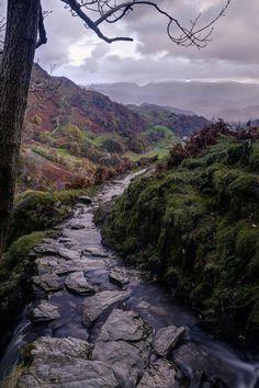 Rocky Stream, Lake District