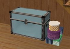 FUNCTIONAL costume trunk for TS2!