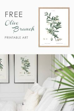 free printable wall art, olive branch vintage botanical illustration, art print, free downloadable art #freeprintablewallart #botanicalart #botanicalart
