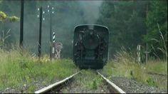 Narrow gauge steam locomotive in Austria