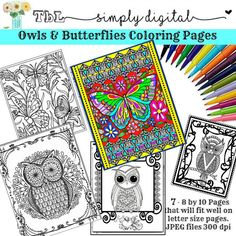 Owls Butterflies Adult Coloring Pages By TbLSimplyDigital
