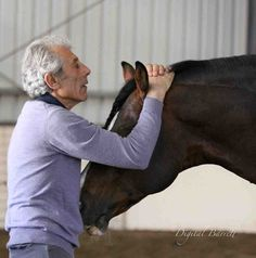 """""I work with my horse, not against him. I assist him instead of insisting. I measure my success training horses, in their willingness to  work with me. A happy, beautiful horse is how I define success.""   Manolo Mendez"