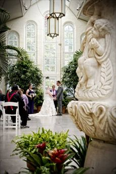 Carolyn Burke - Wedding Officiant in St. Louis at the Piper Palm House in Tower Grove Park