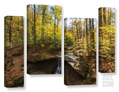Blue Hen Falls, 4 Piece Gallery-Wrapped Canvas Staggered Set Canvas Art Set by Cody York at Art.com
