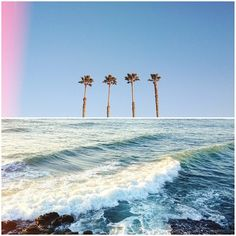 Palm Trees and Beach Waves Summer Breeze, Summer Vibes, Station Balnéaire, California Dreamin', Interior Exterior, Mellow Yellow, Summer Of Love, Hello Summer, Strand