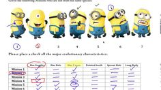 AP Biology - Cladogram Practice with Minions 5th Grade Science, Middle School Science, Ap Biology, Teaching Biology, Physical Science, Science Education, Science Experiments, Earth Science, Life Science