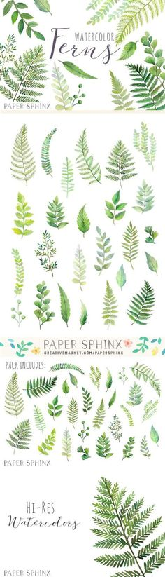 Watercolor Fern Leaf Pack. Wedding Card Templates. $10.00