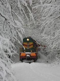 Snow Train, Poland photo via elise