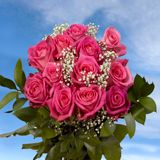 6 Dozen Fresh Cut Roses 3 Dozen Red Roses 3 Dozen Color Roses with Fillers Fresh Flowers Express Delivery Perfect for Birthdays Anniversary or any occasion -- Visit the image link more details.