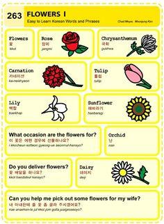 Easy to Learn Korean 263 - Flowers (Vocab) Korean Verbs, Korean Phrases, Learn Basic Korean, How To Speak Korean, Korean Words Learning, Korean Language Learning, Korean English, English English, English Grammar