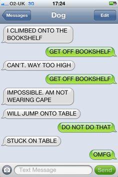Batdog strikes again, wakakaka.. Texts from Dog.. #funny #humor