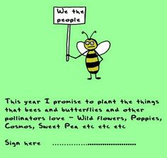 Save the Bee's!  March 2014  - now is the time to start with an insect hotel, flowers and dead wood for the bees.  Don't wait -   start today.