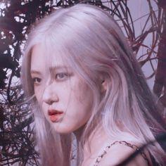 Kpop Aesthetic, Aesthetic Girl, Lisa Blackpink Wallpaper, Rose Icon, Black Pink, Sunflower Wallpaper, Rose Park, Blackpink Photos, Jennie Lisa