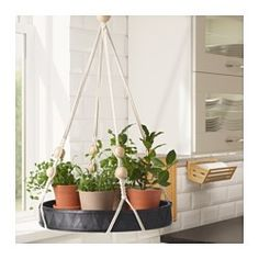 IKEA - ANVÄNDBAR, Tray, Keep fresh herbs, spices, oil and vinegar close at hand with this hanging tray.You can also use this hanging tray to create your own hanging garden with your favorite flowers.Keeping plants indoor gives better air quality at home, as plants add oxygen and moisture.