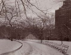 Washington Square Park in winter, Nat Kaufman Collection, c. 1950, Greenwich Village Society for Historic Preservation Archive.