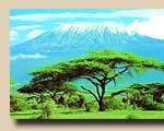 Mount Kilimanjaro climbing routes/African home adventure safaris Volunteer In Africa, Mount Kenya, Mount Kilimanjaro, Mountain Climbing, Travel Around, Trekking, Safari, Hiking, African