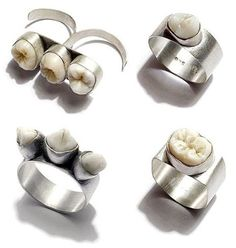 Human Tooth Ring by Polly van der Glas. All works are handmade in Melbourne, with sterling silver and human teeth. Human teeth are locally donated and sterilised. Teeth are particularly difficult to come by, so any donations are gratefully accepted. Humor Dental, Dental Teeth, Dental Hygiene, Jewelry Art, Jewelry Accessories, Fairy Jewelry, Silver Jewelry, Unique Jewelry, Jewelry Design