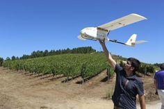 Los drones se hacen imprescindibles en el viñedo español