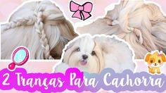 Penteados Para Cachorros: Trança Cruzada e Torcida Para Cadela #VEDA7 ❥ ...