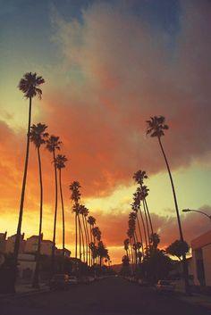 Californian sunset. Los Angeles i love you. LA style palms