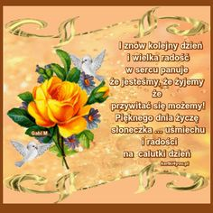 Stowa, Good Morning Gif, Good Advice, Fruit, Humor, Blessings, Ornament, Roses, Google