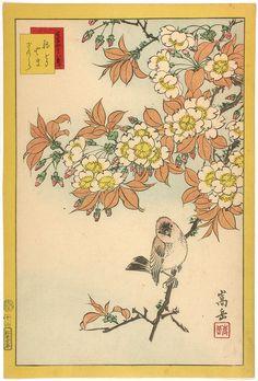 Sugakudo birds and flowers print