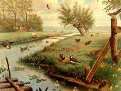 The World of Flow - Flow Magazine Old School Pictures, Vintage Botanical Prints, School Posters, Vintage School, Nature Illustration, Dutch Artists, Naive Art, Historical Pictures, Fauna