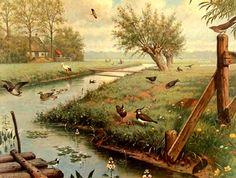 Voor aan de muur ingelijst, lekker 'retro' of een vogel-kaart. M.A. Koekoek, In de Weide.