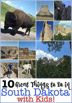 10 Great Things to Do in South Dakota with Kids! - There are so many great things to do in South Dakota with kids! We took a family road trip to the B - Best Family Vacations, Family Road Trips, Family Travel, South Dakota Vacation, South Dakota Travel, Rapid City South Dakota, Florida Vacation, Cruise Vacation, Family Vacation Destinations
