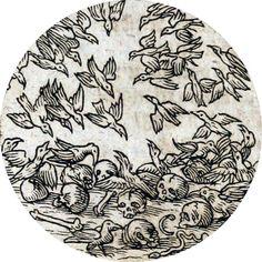 Hermes Trismegistus - Occvlta philosophia [x] Medieval Drawings, Medieval Art, Art And Illustration, Occult Art, Esoteric Art, Gravure, Larp, Dark Art, Art Inspo