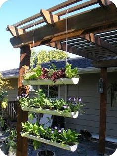 Try and recreate this Gutter Garden! Love this recycled idea!