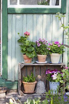 Samla dina krukor till ett vackert blickfång. Vänd en gammal äppellåda och använd den som hylla till dina sommarblommor.