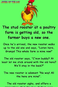 """The stud rooster at a poultry farm is getting old, so the farmer buys a new one. Once he's arrived, the new rooster walks up to the old one and says, """"Listen here, Gramps! This whole farm is mine now! Funny Long Jokes, Clean Funny Jokes, Funny Jokes For Adults, Funny Pranks, Funny Quotes, Funny Stuff, Funny Memes, Corny Jokes, Hilarious Jokes"""