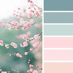 Color inspiration : Blush + blue green spring color inspiration #color #colorpalette #colorinspiration