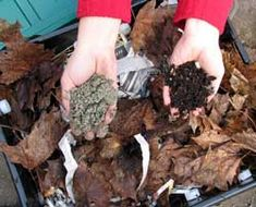 home composting made easy - this is a worm bin