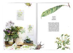 Sian Zeng Catalogue 2015 on Behance