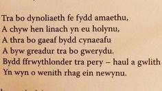 Goreuon Welsh, Quotes, Instagram Posts, Welsh Language, Quote