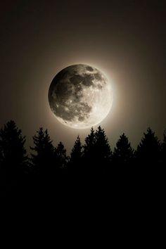 Lunar Eclipse ~ By Jonathan Besler