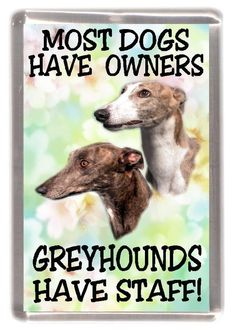 Greyhound Dog Fridge Magnet - Most Dogs Have Owners Greyhounds Have Staff. Great Gift for any Dog Lo