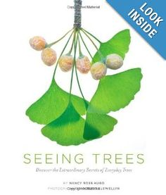 Seeing Trees: Discover the Extraordinary Secrets of Everyday Trees: Nancy R. Hugo, Robert Llewellyn: 9781604692198: Amazon.com: Books