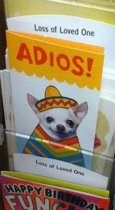 Loss Of A Loved One Adios : loved, adios, Ideas, Funny, Pictures