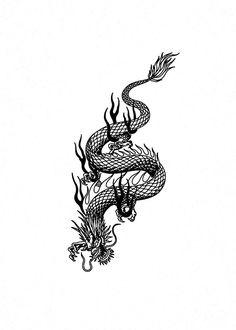 Dragon Tattoo Drawing, Small Dragon Tattoos, Dragon Tattoo For Women, Japanese Dragon Tattoos, Japanese Tattoo Art, Dragon Tattoo Designs, Snake Tattoo, Small Tattoos, Tattoos For Women