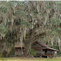 Old Florida, Florida Girl, Vintage Florida, Florida Travel, Central Florida, Florida Home, Florida Style, Abandoned Houses, Abandoned Places