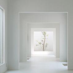 Dezeen - Chiyodanomori Dental Clinic by Hironaka Ogawa