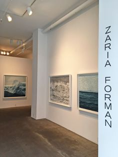 Winston Wächter Fine Art, New York, is pleased to announce its first solo exhibition with artist, Zaria Forman. Featuring intricate pastel drawings of ice and water in its various, shifting states, SLIP presents a meditation on the role of climate change on Earth's most common element.