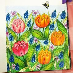 Instagram media muzziie - #prismacolor #adultcoloringbook #blomstermandala…