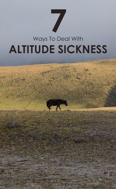 7 Ways To Deal With Altitude Sickness While Travelling In South America. Altitude sickness is real. Not everyone experiences it however some experience it worse than others. After strugglingwith altitude sickness in a month when I moved to Ecuador ( Q Vacation Deals, Travel Deals, Travel Tips, Travel Destinations, Travel Hacks, Travel Advice, Travel Essentials, Vacation Spots, Budget Travel